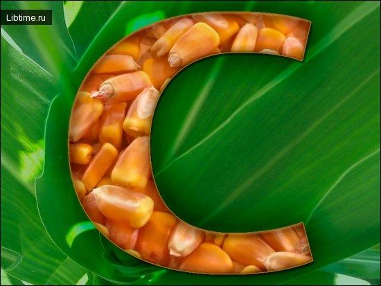 Витамин C в кукурузе