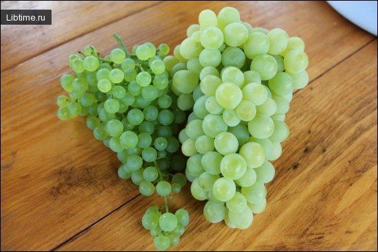 Виноград. Требования к температуре и почве