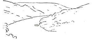 Контурный рисунок линиями одной толщины