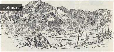 Рисунок с большим количеством штрихов