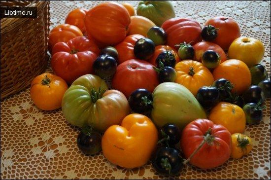 Овощи Украины