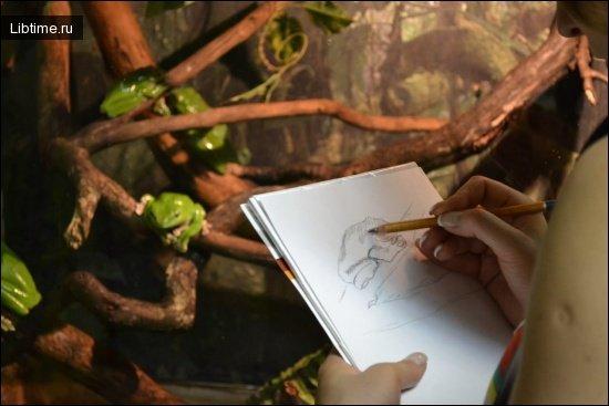 Программа рисования с натуры