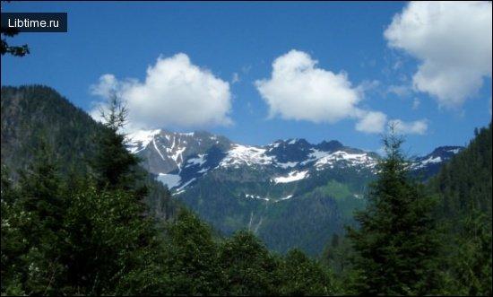 Природнокліматичні фактори та озеленення територій