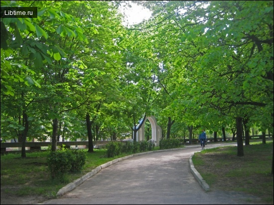 Озеленення територій лікарень