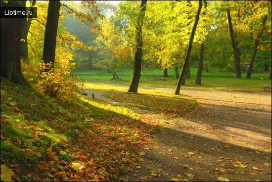 Багатофункціональні парки