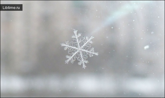 Настоящая снежинка