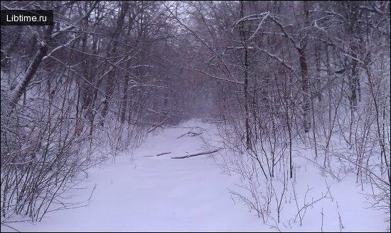 Снег укрывает землю