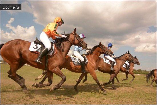Количество лошадиных сил