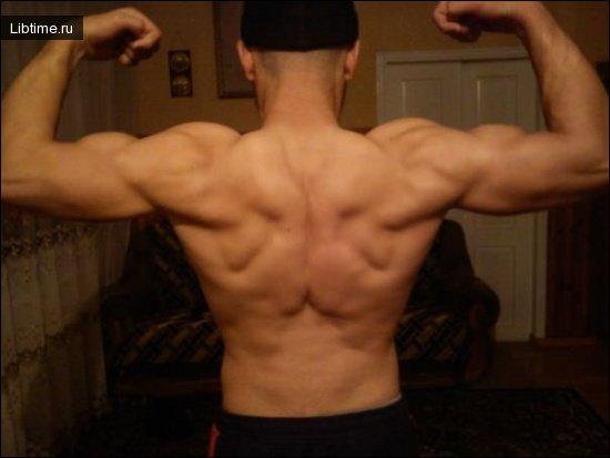 Увеличение массы мышц