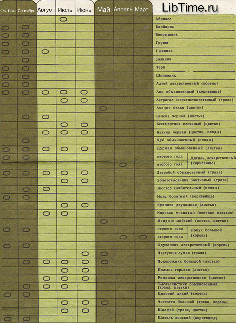 Календарь сбора дикорастущих плодов и лекарственных растений