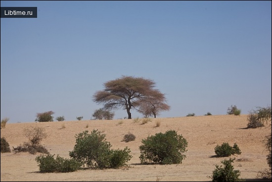 Пустыня вблизи Томбукту