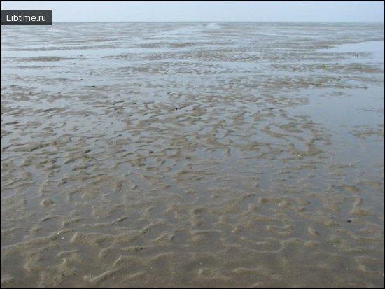 Морской отлив