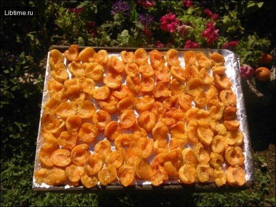 Сушка абрикосов в домашних условиях