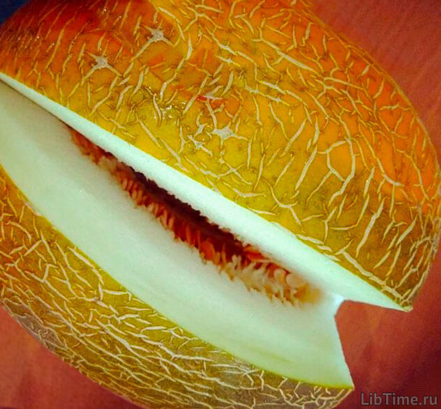 Внутрихромопластная мембранная система