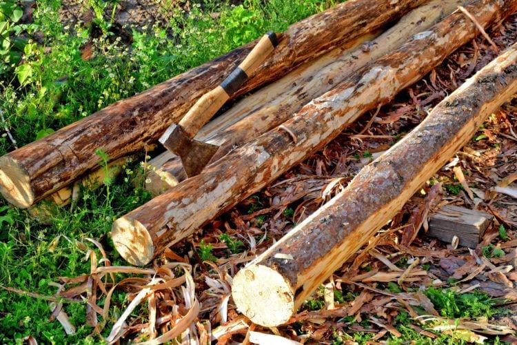 Необходимо соблюдать правила при рубке леса