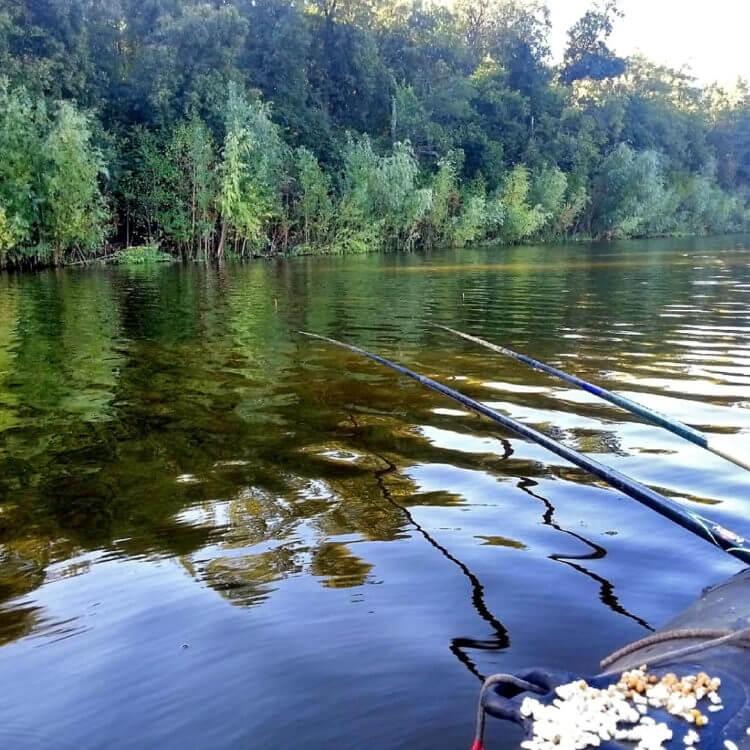 Ловля карася на удочку как на один из видов снастей для рыбалки