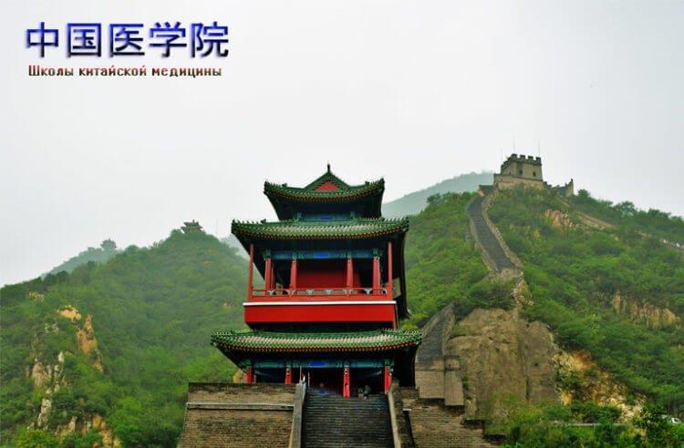 Школы китайской медицины