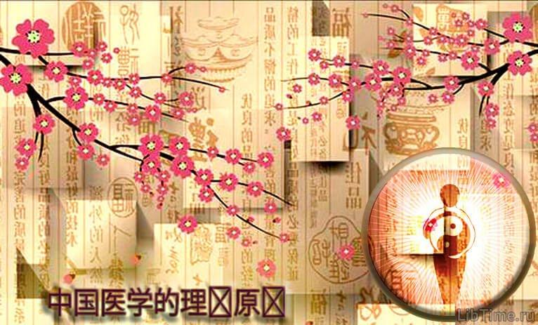 Теоретические положения китайской медицины