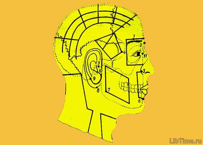 Точки головы и лица