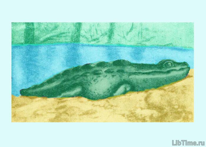 Древний ящер метопозавр