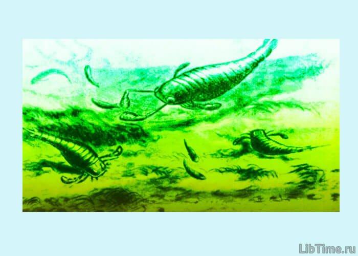 Ракоскорпионы обитатели морей