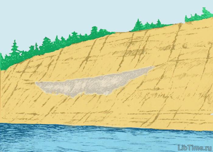 Находки из древней жизни Земли