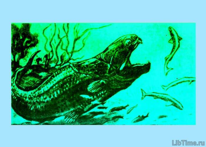 Хищная рыба динихтис