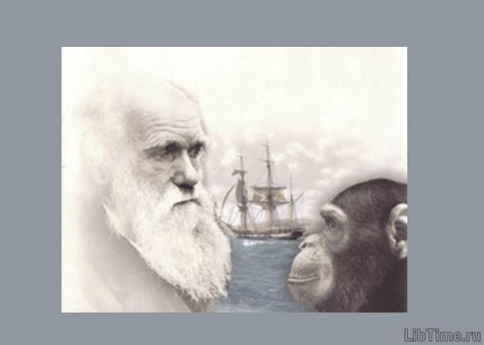 Эволюция предков человека