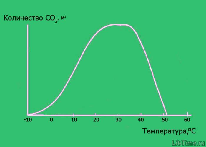 Зависимость фотосинтеза от температуры