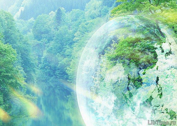 Как влияют внешние факторы на процесс фотосинтеза