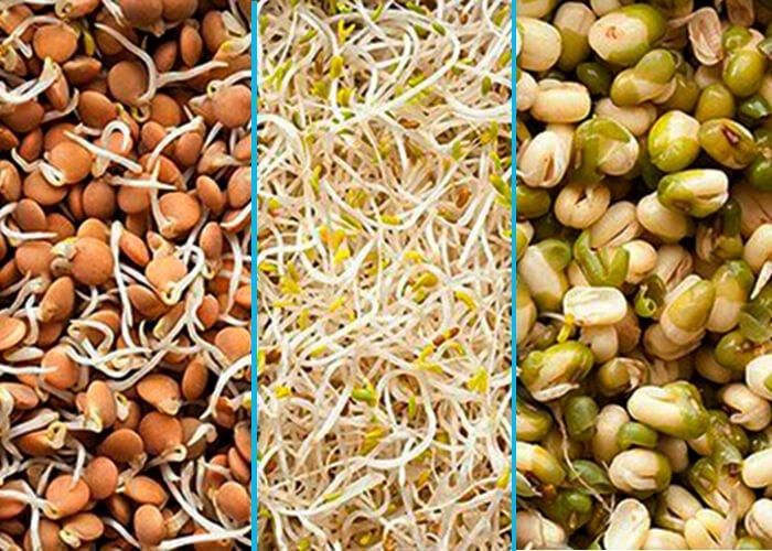Прорастающие семена