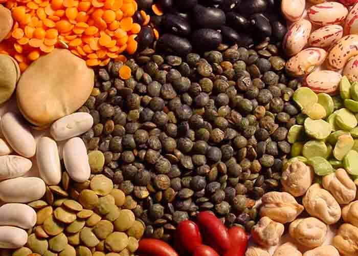 Семена бобовых растений